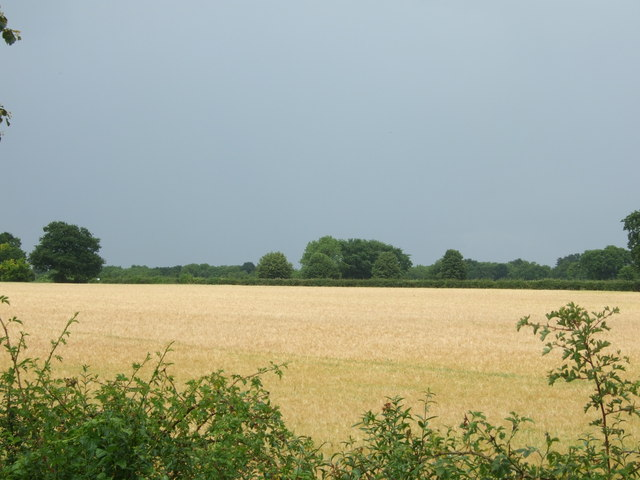 Arable farmland just after a heavy shower