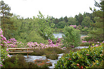 NU0702 : Lakeside view on Cragside estate by Andy F