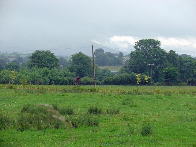 Field near Birdhill, Co. Tipperary