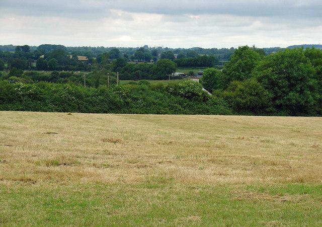 Field near Cappaboggan, Co. Meath