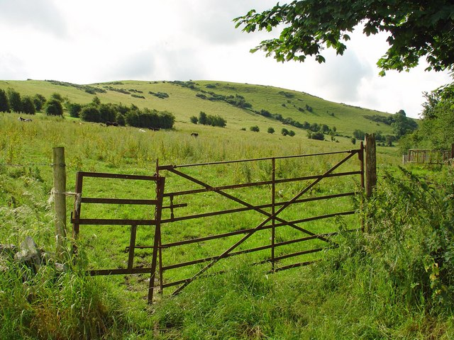 Gate and pasture near Croghan, Co. Offaly