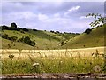 SE8762 : Whay Dale by Dr Patty McAlpin
