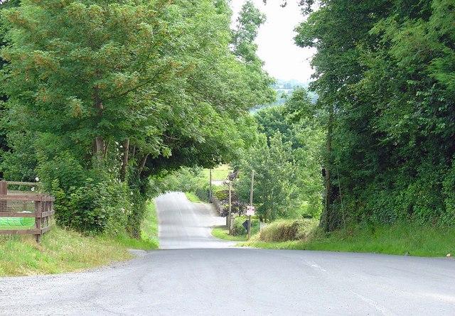 Lane near Owning, Co. Kilkenny