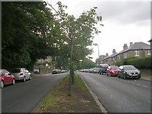 SE0824 : Arden Road by Betty Longbottom