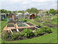NZ2467 : Allotments on Little Moor (2) by Mike Quinn