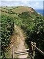SX0145 : Coast path above Polstreath by Derek Harper