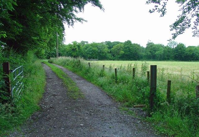 Farm track near Ballinabrackey, Co. Meath