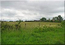 N5941 : Field near Ballinabrackey, Co. Meath by Dylan Moore