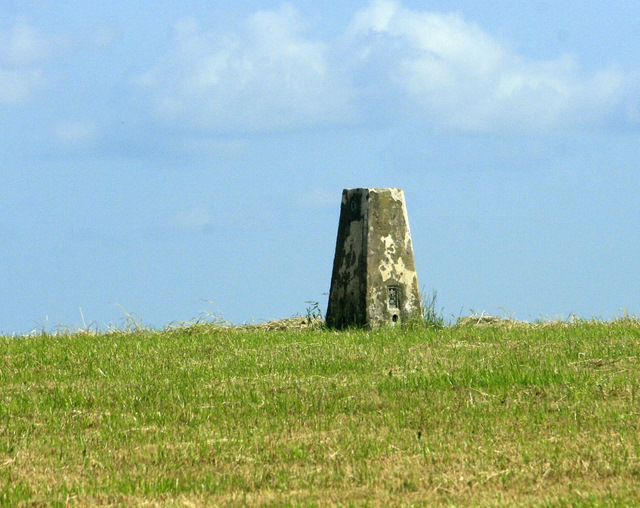 2009 : Trig. point on Maes Knoll