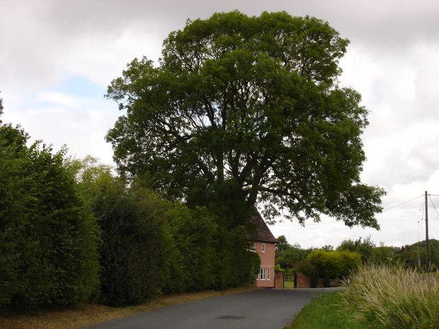 Raydon Road