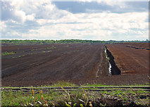 N4823 : Peat extraction south of Daingean, Co. Offaly by Dylan Moore