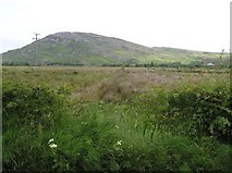 C3547 : Crossconnell Townland by Kenneth  Allen
