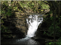NY9038 : Waterfall on Middlehope Burn by Mike Quinn