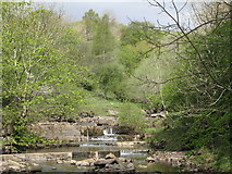 NY9038 : Waterfalls on Middlehope Burn (4) by Mike Quinn