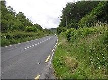 C3842 : Road at Meendoran by Kenneth  Allen