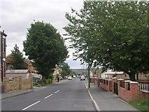 SE1527 : Wilson Road - Huddersfield Road by Betty Longbottom