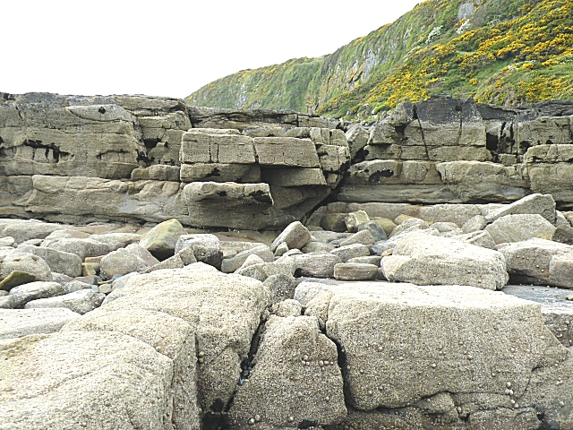 Carboniferous Strata near the North Solway Fault