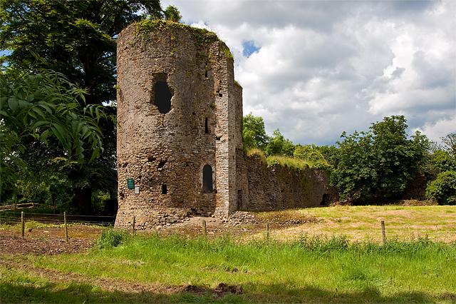 Castles of Munster: Kilbolane, Cork