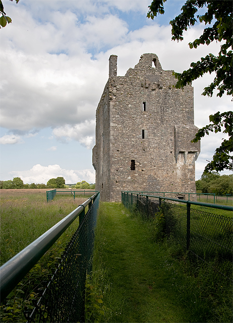 Castles of Munster: Ballymalis, Kerry (1)