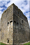 V8493 : Castles of Munster: Ballymalis, Kerry (2) by Mike Searle