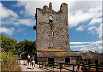 W9994 : Castles of Munster: Lisfinny, Waterford by Mike Searle