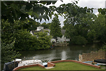 TQ1169 : Sunbury Court Island by David Kemp