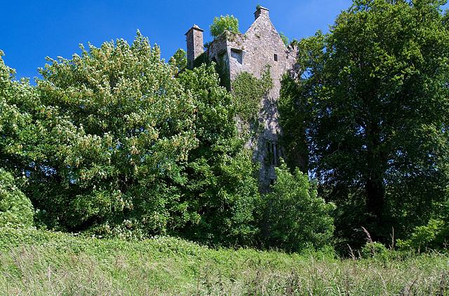 Castles of Munster: Ballyclogh, Cork (1)