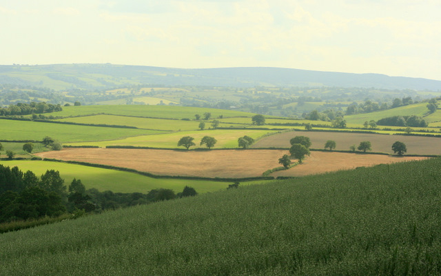 2009 : South of west on Maes Knoll