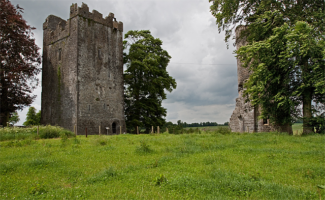 Castles of Leinster: Burnchurch, Kilkenny