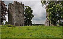 S4747 : Castles of Leinster: Burnchurch, Kilkenny by Mike Searle