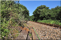 SX4460 : Plymouth to Gunnislake railway track at Ernesettle by Mick Lobb