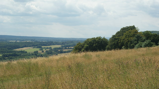 View From Ranmore Common, Surrey (3)