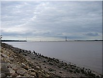 TA0224 : Humber Bridge from North Ferriby by Ian Paterson