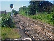 SO7845 : Cat crossing the line near Great Malvern Station by Trevor Rickard