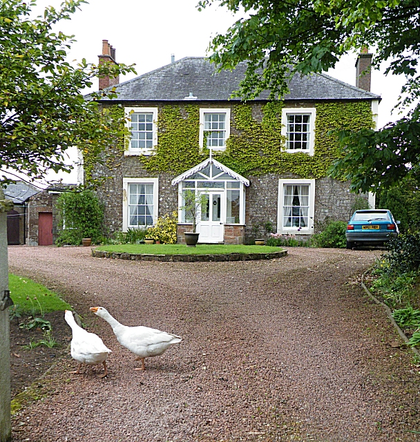 House With Guard Geese 169 Anne Burgess Geograph Britain