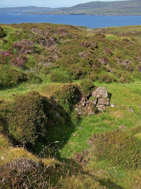 Shieling hut remains