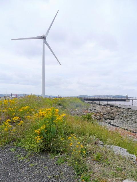 Wind turbine at Avonmouth