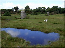 SN1329 : Standing stones at Gors Fawr by ceridwen
