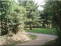 TQ4001 : Chatsworth Park by Paul Gillett