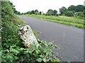 N4151 : Milestone on the Royal Canal near Mullingar, Co. Westmeath by JP