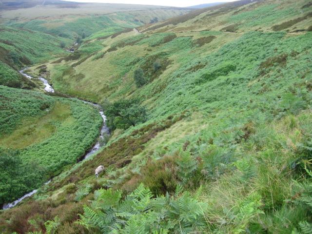 River Derwent at Lands Side