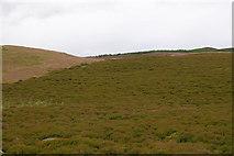 NN8444 : Moorland by Rob Burke