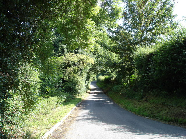 Common Lane