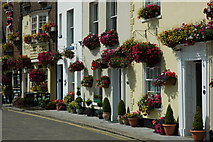 TR3752 : Floral display on Deal seafront by Philip Halling