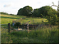 NY7808 : Former railway trackbed above Hartley by Stephen Craven