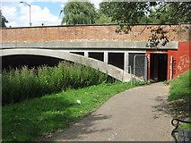 TR1558 : Subway under Kingsmead Road bridge, Canterbury by David Anstiss