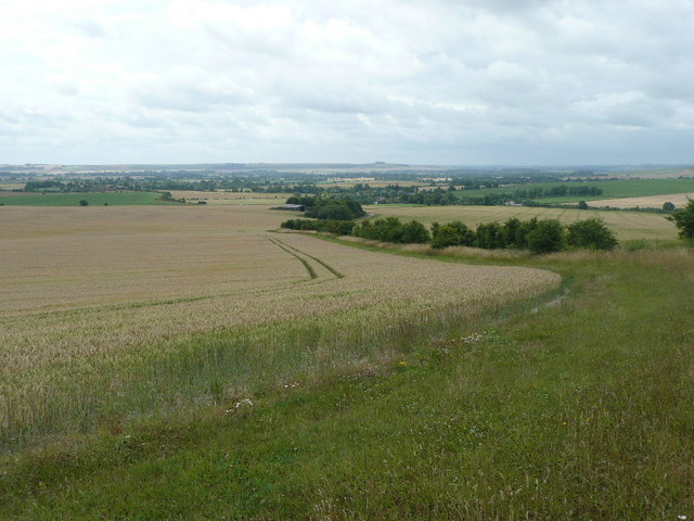 Looking across the Vale of Pewsey