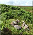 NS4380 : Ruined lime-kiln by Lairich Rig