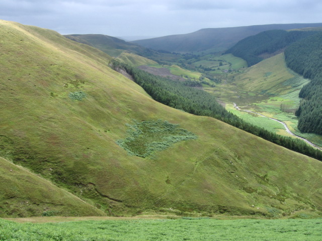 Hillside along the  Alport Valley
