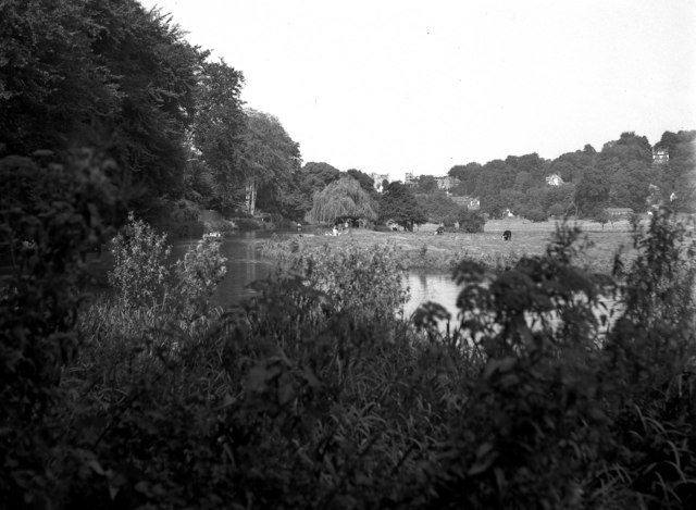 The Wey Navigation south of Guildford